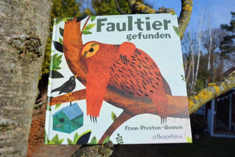 Faultier gefunden – Ein ungewöhnlicher Gast im Gartenbaum