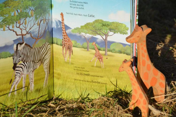 Elternliebe Bilderbuch Giraffen