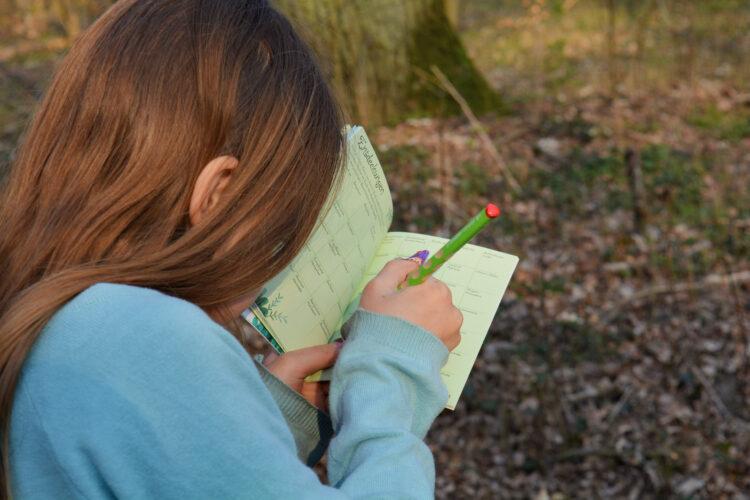 Naturfürer Kinder spielen im Wald