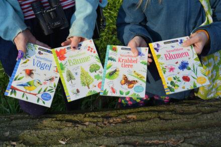 Usborne Minis: Naturführer Vögel, Bäume, Krabbeltiere und Blumen + Verlosung