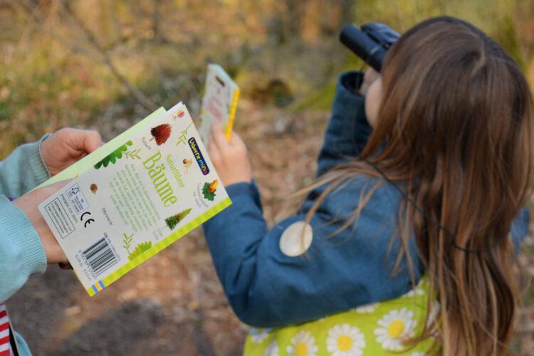 Naturführer für Kinder Usborne Minis