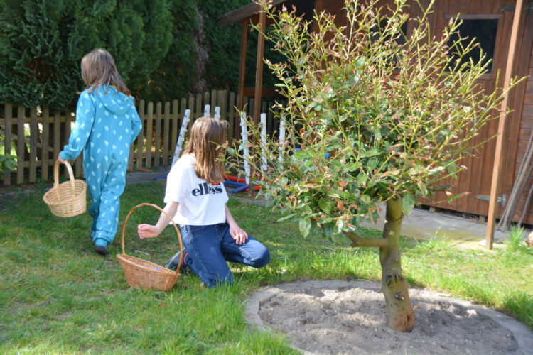 Osterkörbchen Ostereiersuche im Garten