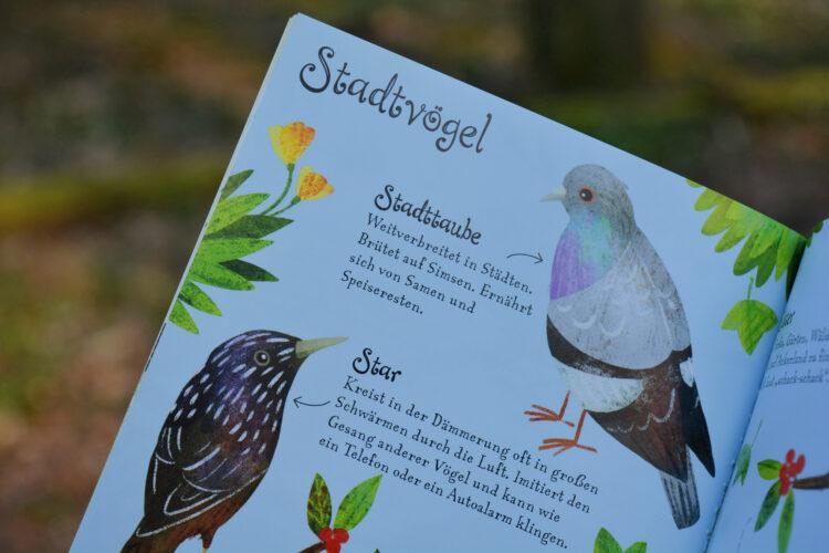 Stadtvögel Naturführer Kinder