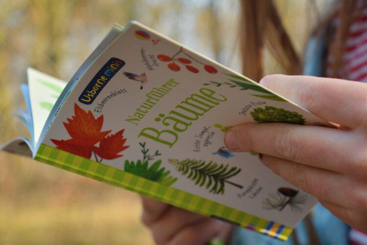 Naturführer Bäume Usborne Verlag