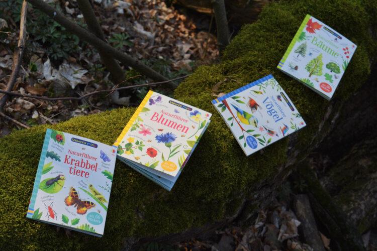 Usborne Minis: Naturführer Vögel, Bäume, Krabbeltiere und Blumen