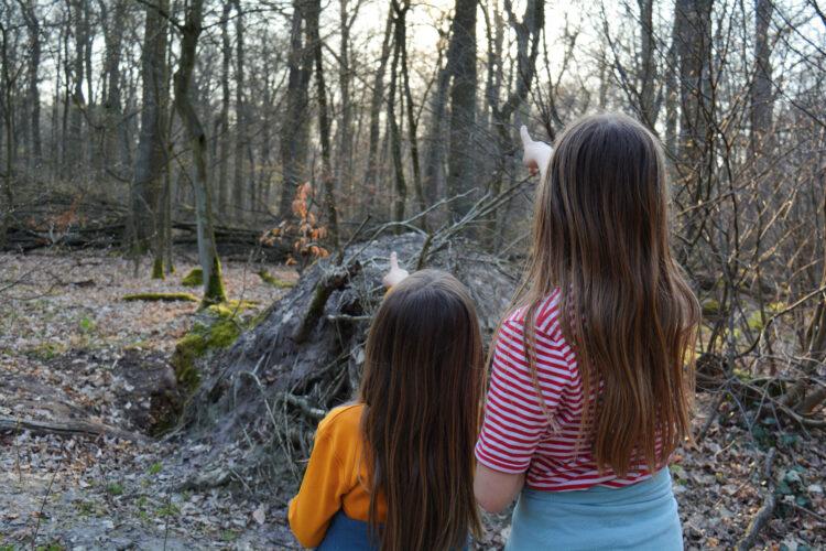 Kinder im Wald Buntspecht