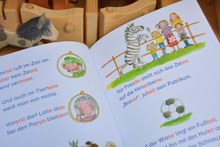 Kinderbuch Ein Zebra auf dem Ponyhof