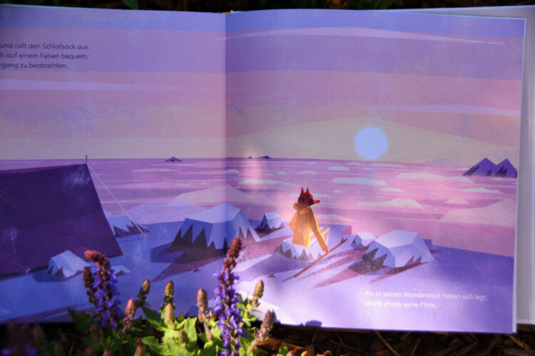 Fuchs beim Sonnenuntergang