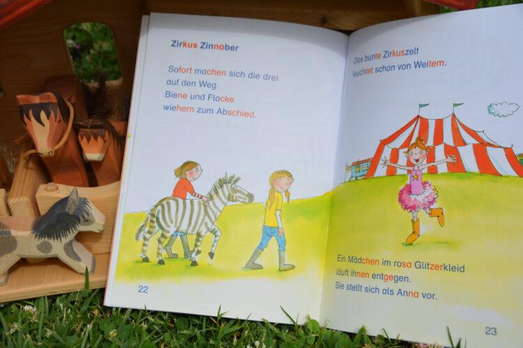 Erstlesebuch Silbentrennung Ein Zebra auf dem Ponyhof