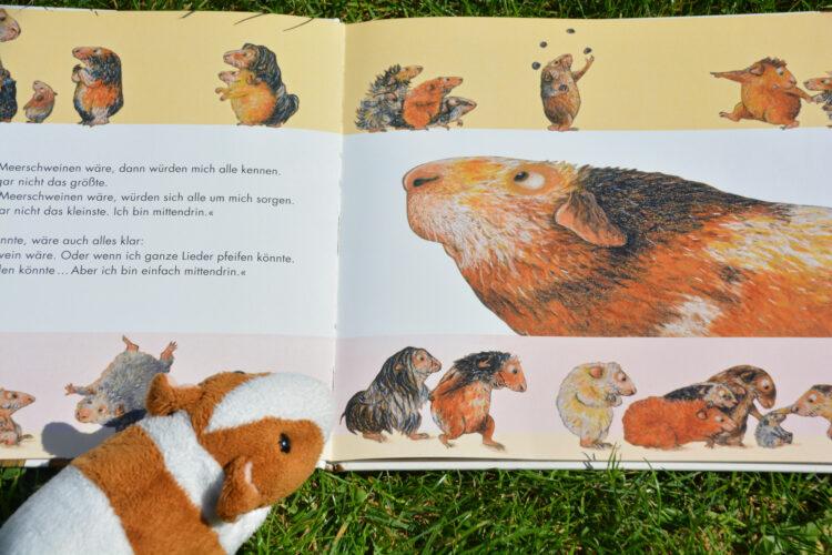 Miro Meerschweinchen Bilderbuch
